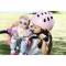 Baby Annabell - Scaun bicicleta