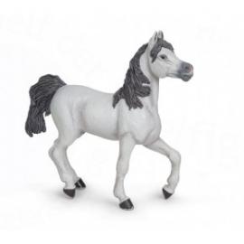 Cal alb arab - Figurina Papo