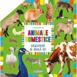 Carte pop-up - animale domestice