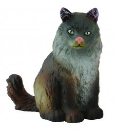Pisica norvegiana din padure  - Collecta