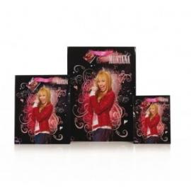 Punga Hannah Montana XL