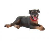 """Caine """"Rottweiler""""-Fiona"""