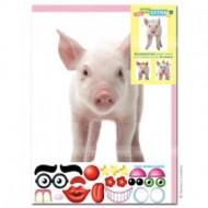 Felicitare amuzanta Little Extra Porc