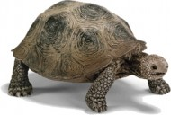 Figurina animal Broasca testoasa giganta - 14601