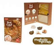 Kit paleontologie - Descopera fosile
