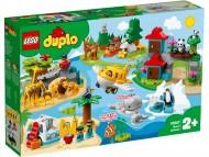 LEGO® DUPLO  ANIMALELE LUMII 10907