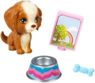 Set accesorii Barbie Mini Pet Pack - Mattel CFB50-CFB56