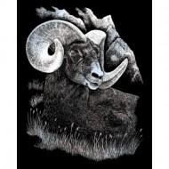 Set gravura pe folie argintie - Berbec